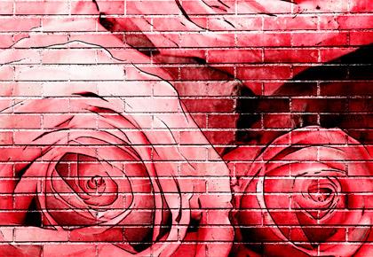 Sant Jordi 2019 Col·laborem amb Recicla Cultura | Iuris.doc | Màrqueting de Continguts