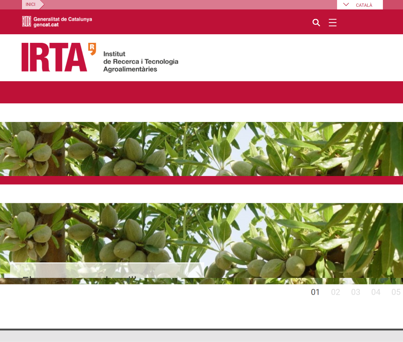 Auditoria accessibilitat web IRTA